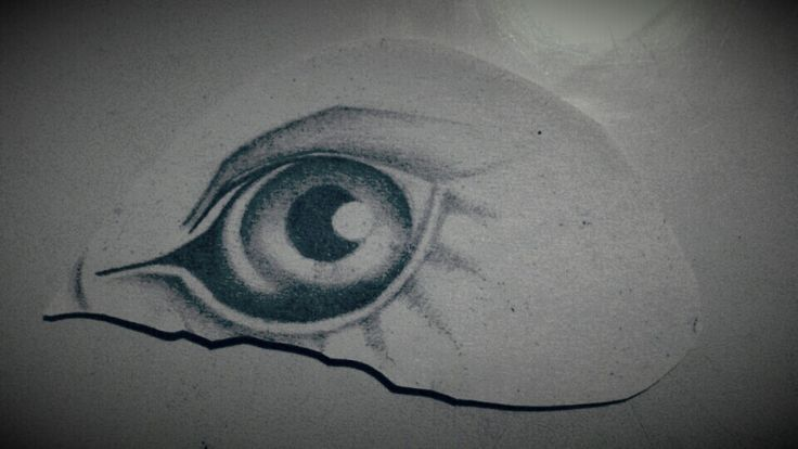Eye b&g