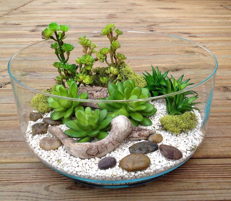 les 25 meilleures id es de la cat gorie plantes grasses. Black Bedroom Furniture Sets. Home Design Ideas