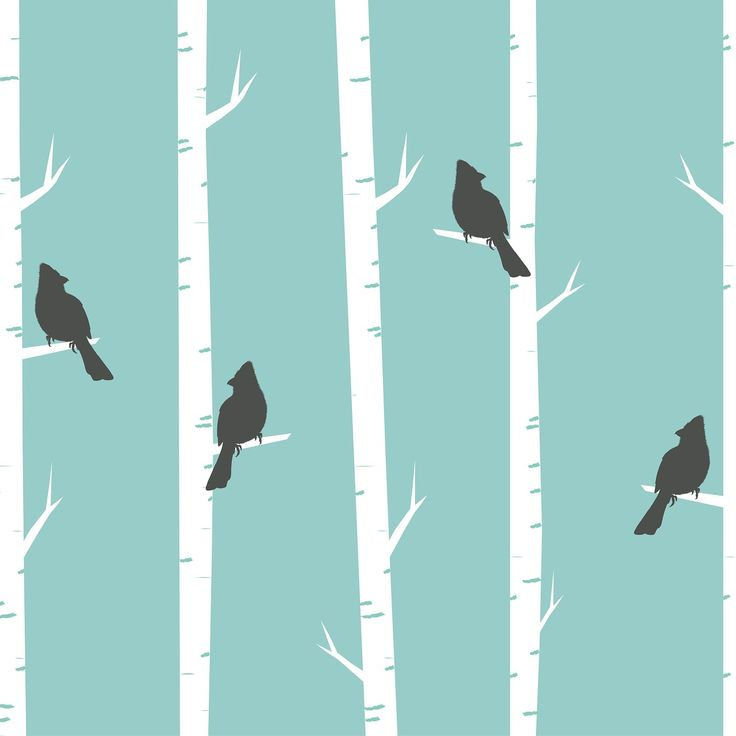Birds, Trees, Birch, Birch Trees, Perched, Black, Blue