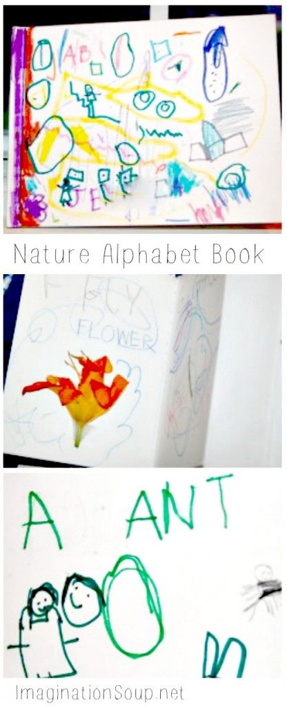 Nature alphabet books writing ideas and literacy