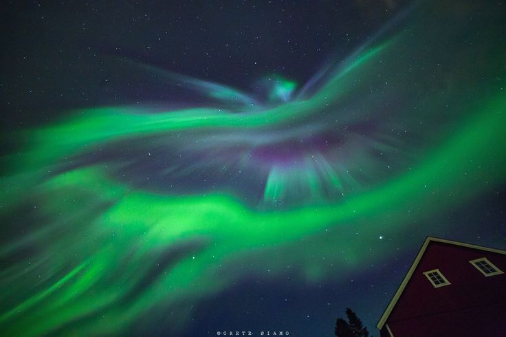 """Hræsvelgr  """"Hræsvelgr he is called, who at the end of heaven sits, a Jötun in an eagle´s plumage: from his wings comes, it is said, the wind, that over all men passes.""""  - Vafþrúðnismál"""
