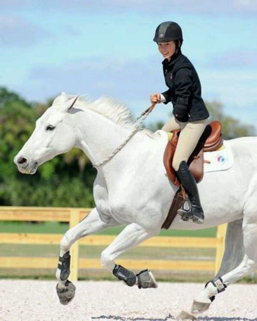 Beautiful free horse riding. I need a rope like that... It looks soft and the horse looks very happy!