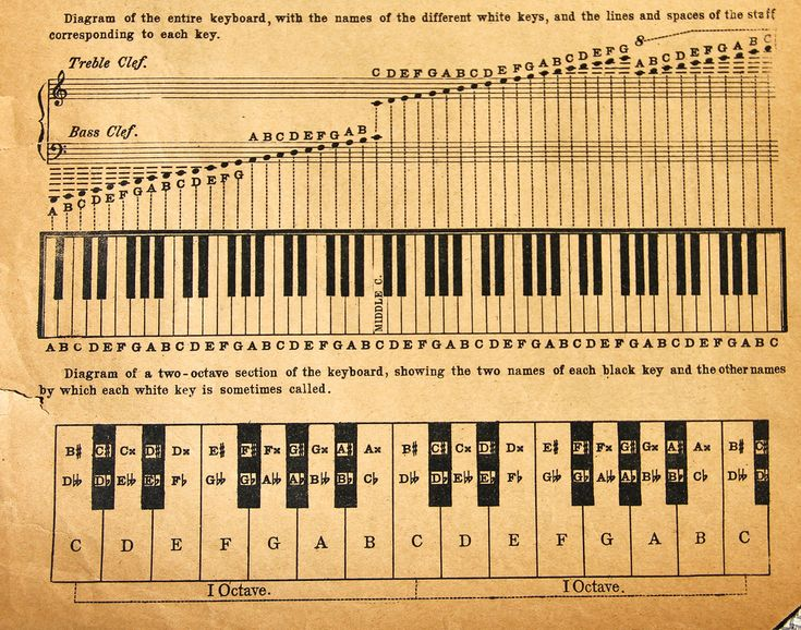 https://flic.kr/s/aHsjymYDtr | Sheet Music, & Charts - Old Days
