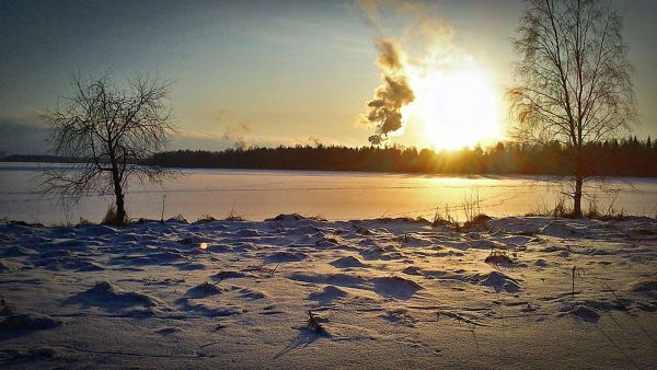 ..winter day in Sweden January 29 2014 by carro