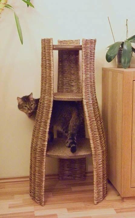 Repisa (домик для кошки)
