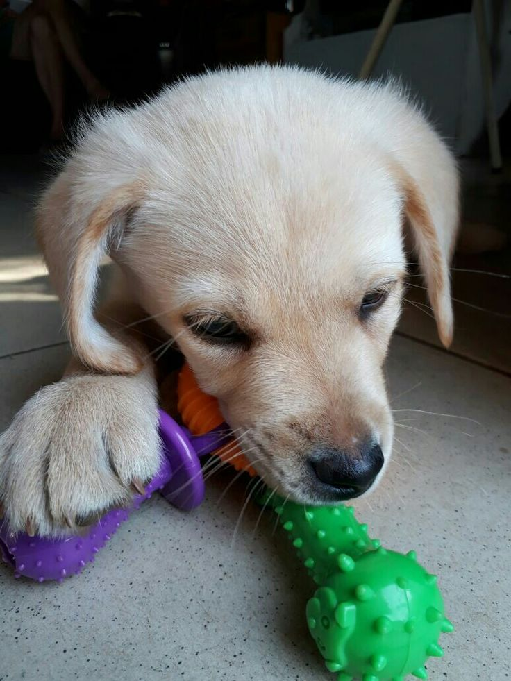 So cute!!♡#