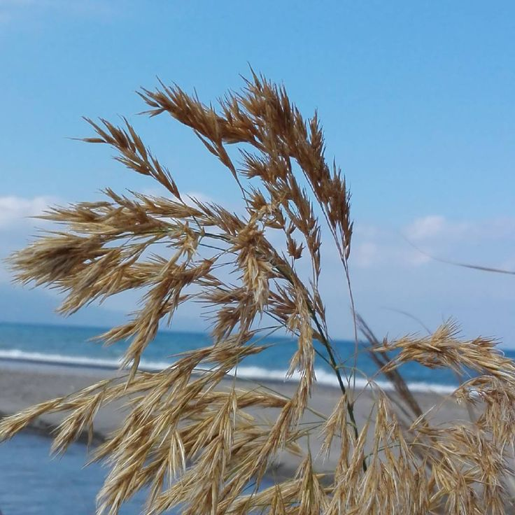 Taken at Gerani beach on #crete today. #nature #Greece #picoftheday #beach