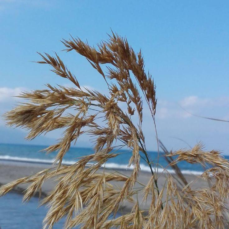 Taken at Gerani beach on #crete today. #nature #Greece #picoftheday #beach