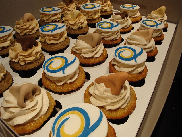 Sinus Medication Cupcakes for a Pharmaceutical Rep