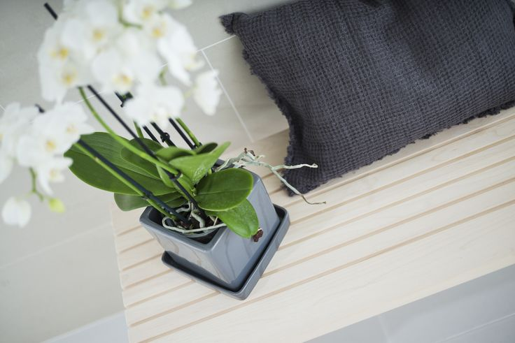 Kasvillisuuden avulla saat lisää eloa kylpyhuoneeseesi.