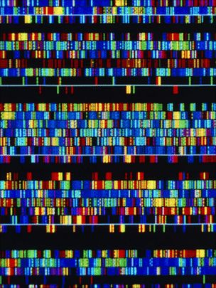 An individual human genome consists of over three billion genes and some three million variations