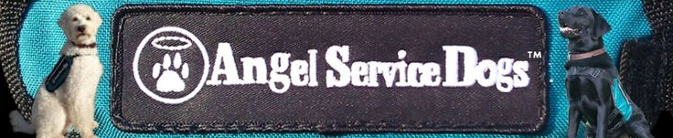 Angel Service Dogs » Angel Service Dogs, Inc., a 501-C-3, is devoted to placing Allergy Alert Dogs, specially trained for peanut, tree nut, ...