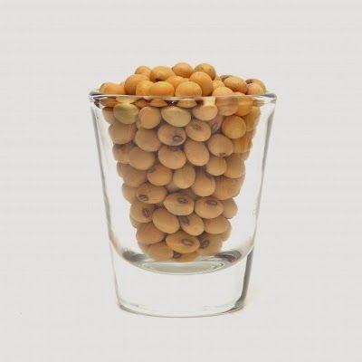 FaBenessere: Le proteine della soia