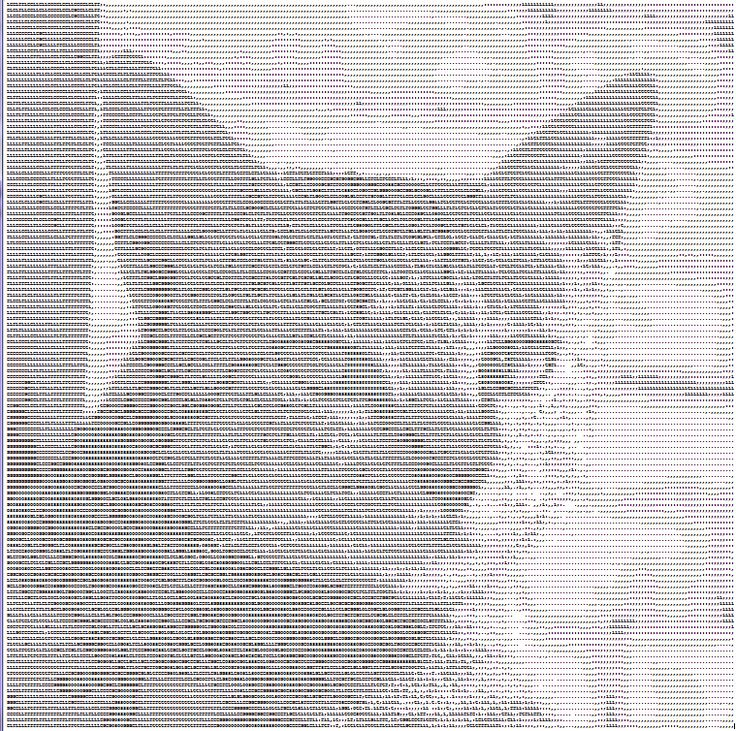 Pictures Made Out Of Text Selol Ink