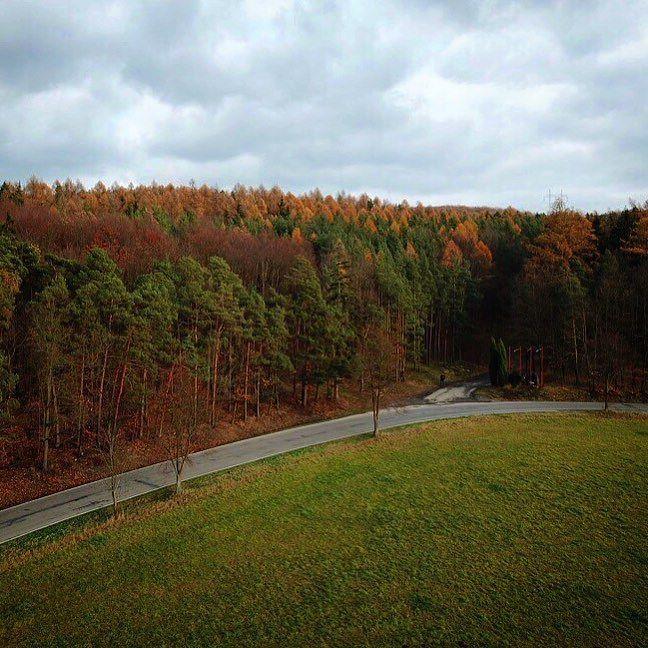 Bariéra... #trees #route #november #homedecor #homeland