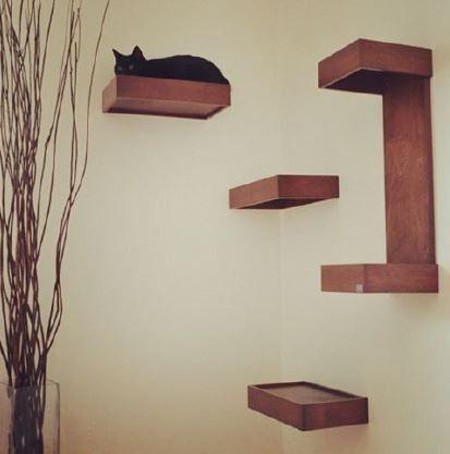 TABLETTES MURALES POUR CHAT HUVE - Caractéristiques : Modèle design et tendance. Fait de bois massif pour meilleure durabilité. Teinture et finition à base d'eau, écologique et non-toxique. Bonne alternative aux arbres à chat si manque d'espace. Inclus avec ensemble de trois tablettes : un coussin avec housse lavable et quincaillerie. Inclus avec tablette en C : quincaillerie. Installation : Imagination requise pour créer un superbe décor pour vos félins