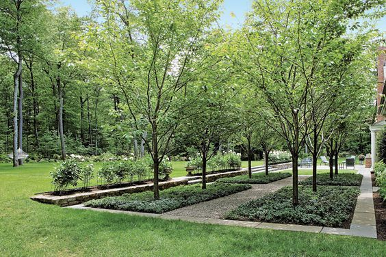 bosque landscape architecture - Google Search