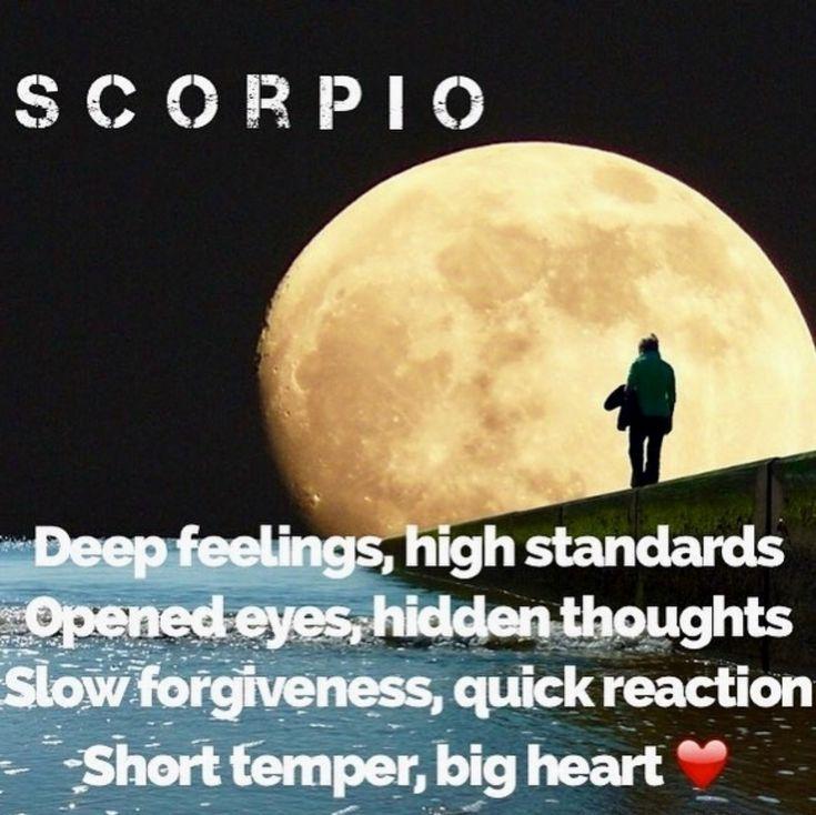 die besten 25 skorpion ideen auf pinterest horoskop skorpion skorpion liebe und zitate zum. Black Bedroom Furniture Sets. Home Design Ideas