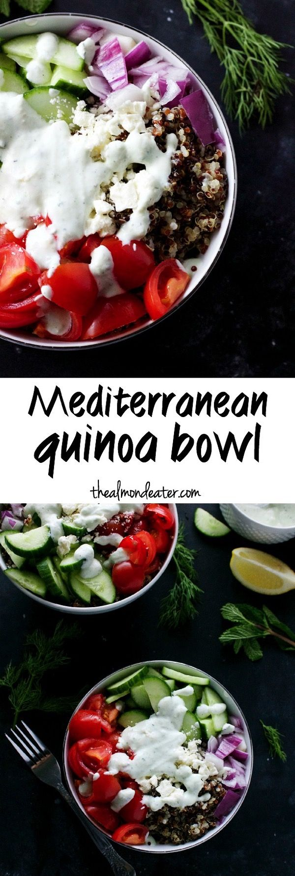 Quinoa topped with tomatoes, cucumbers, onions, and cheese and then drizzled in a healthy, homemade tzatziki sauce | thealmondeater.com