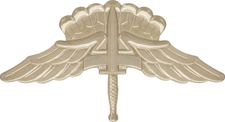 Military Free Fall Parachutist Badge (1994; SOCOM) (1997; Army-wide)