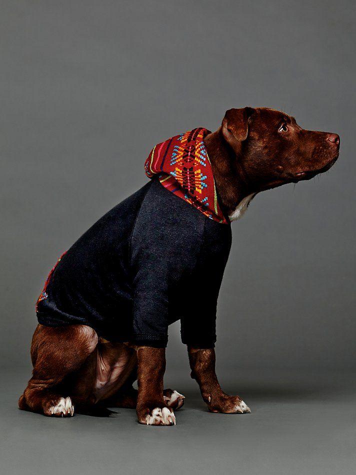 Pinnacle Dog Hoodie at Free People Clothing Boutique