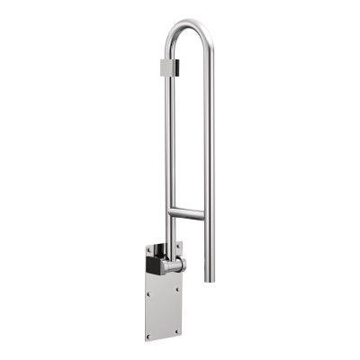 R8960FD Handicap Friendly Bathroom Renovation Pinterest Grab
