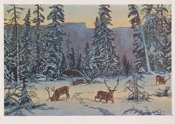 Paintings with Deer. Collection / Set of 10 Vintage Prints, Postcards -- 1960s-1980s  Custom Set without cover 4x6x10 (postcard), has not been written on