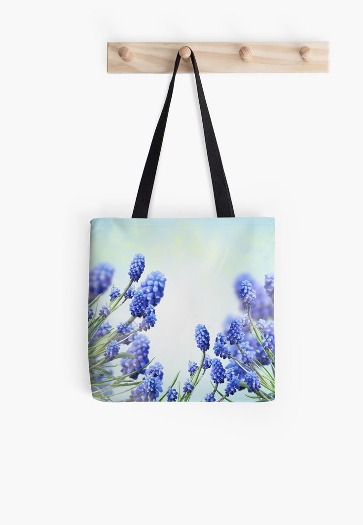 Grape hyacinth by kamparin