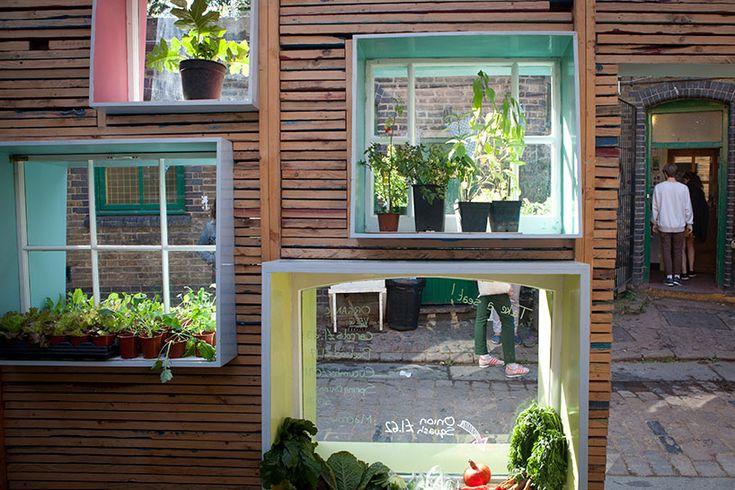 green finestre