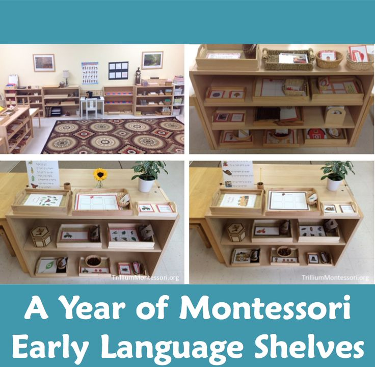 A Year of Early Language Shelves - trilliummontessori.org — trilliummontessori.org