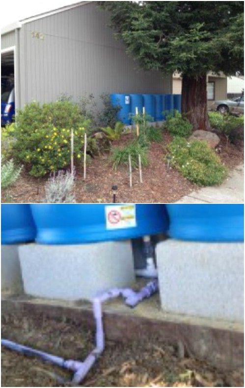 DIY Rain Water Irrigation System