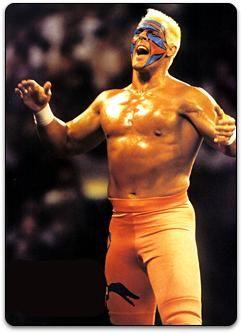 Professional Wrestling Online Museum - Sting