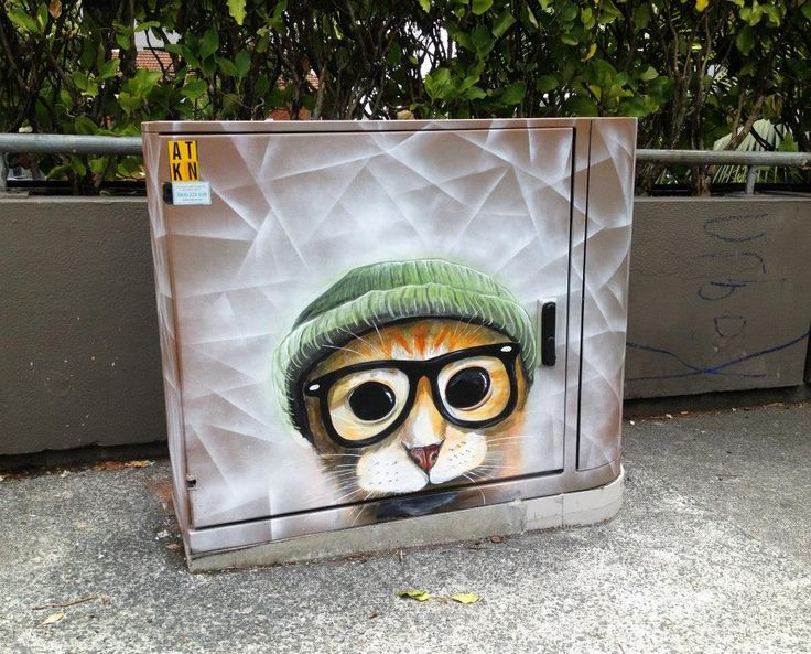 Paul Walsh, Auckland, Nw. Zealand