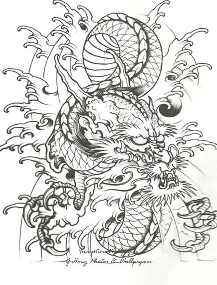 1000 images about dragons on pinterest tattoo stencils japanese dragon tattoos and stencils. Black Bedroom Furniture Sets. Home Design Ideas
