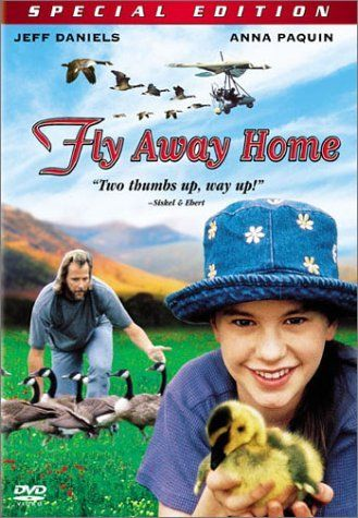 Fly Away Home - Hero's Journey Lesson Plan - Lesson Plans from Movies and Film - Monomyth, Joseph Campbell, Carl Jung and Christopher Vogler