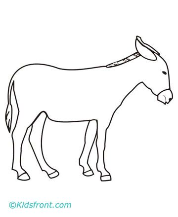 137 best images about animal coloring book on pinterest for Donkey coloring pages free