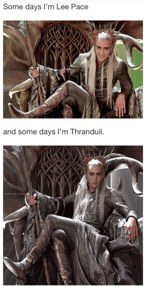 Some days I'm Lee Pace....And some days I'm Thranduil. #thehobbit