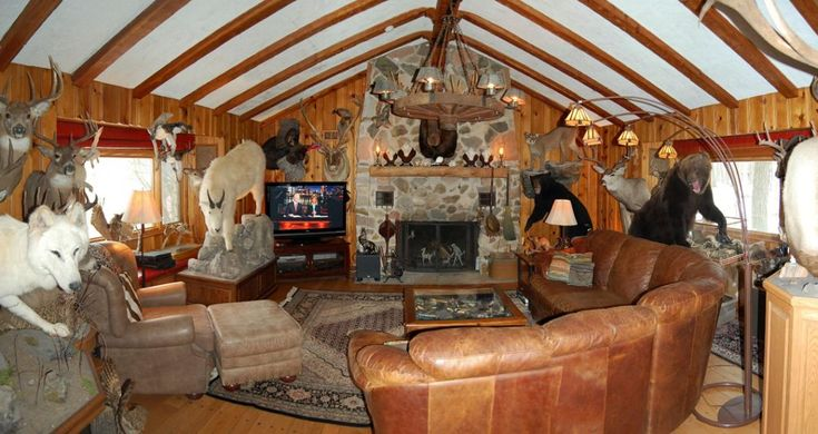 Interesting how some people live! How much taxidermy can you have in one room? A bear? A mountain goat? A wolf?
