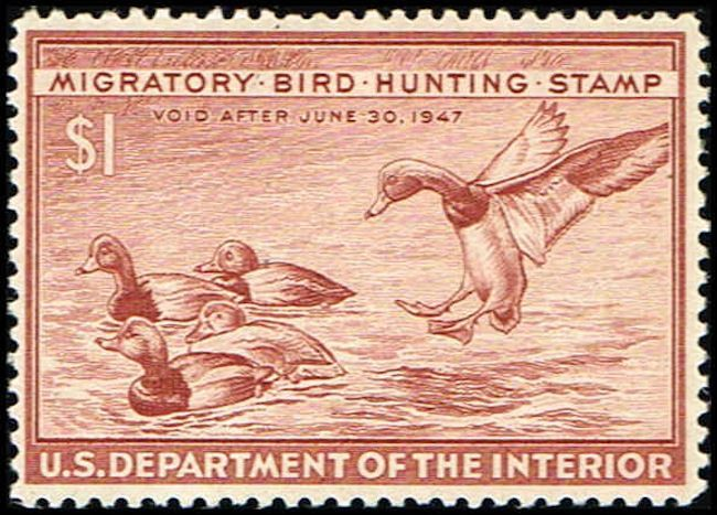 US RW13 Stamp Redhead Ducks Duck Stamp US RW13-3 MH (http://www.bmastamps2.com/stamps/united-states/us-rw13-stamp-redhead-ducks-duck-stamp-us-rw13-3-mh/)