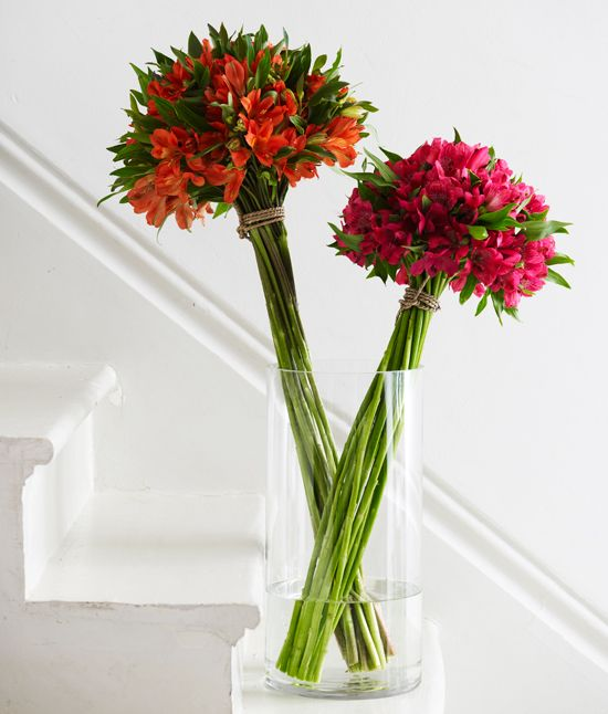 Tabulous Design: Little But Mighty Alstroemeria