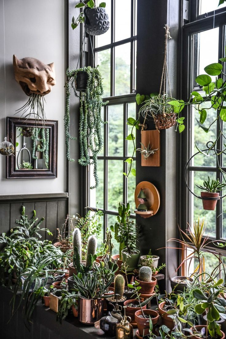 20 besten Indoor gardening & rooms Bilder auf Pinterest | Deko ideen ...