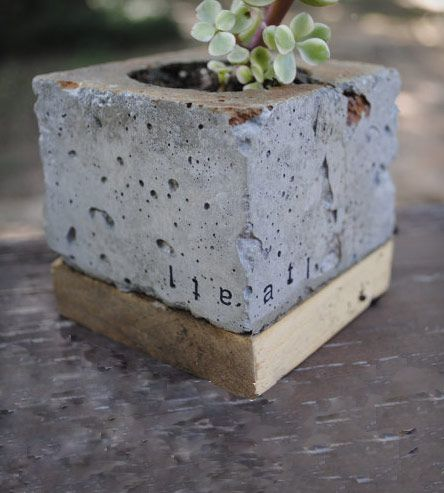 Concrete Cube Planter | Home Decor | MDC Interiors | Scoutmob Shoppe | Product Detail