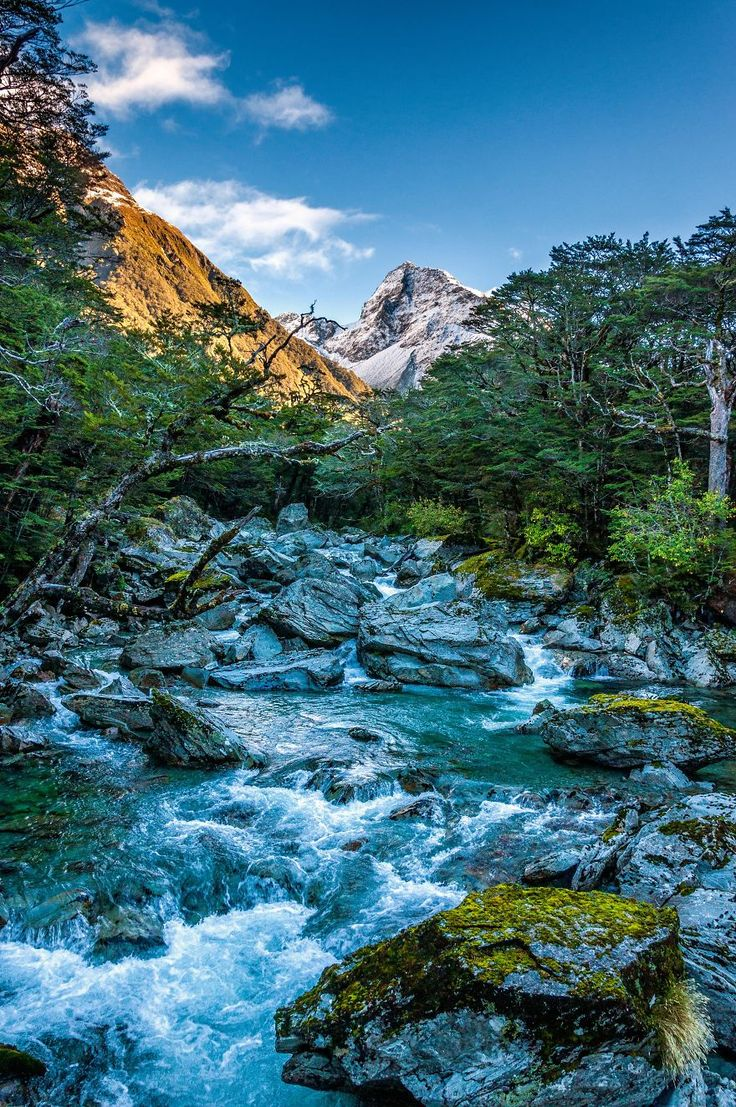 New Zealand's South Island Is Heaven On Earth | Bored Panda Routeburn River NZ by Antony Harrison