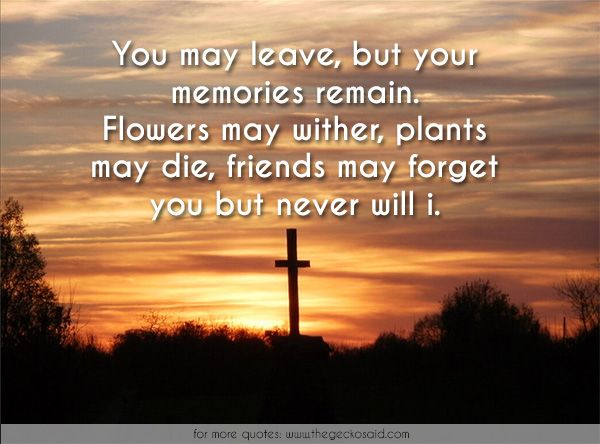 You may leave, but your memories remain. Flowers may wither, plants may die, friends may forget you but never will i.  #die #flowers #forget #friends #leave #memories #never #plants #remain #wither #quotes  © 2016 The Gecko Said – Beautiful Quotes