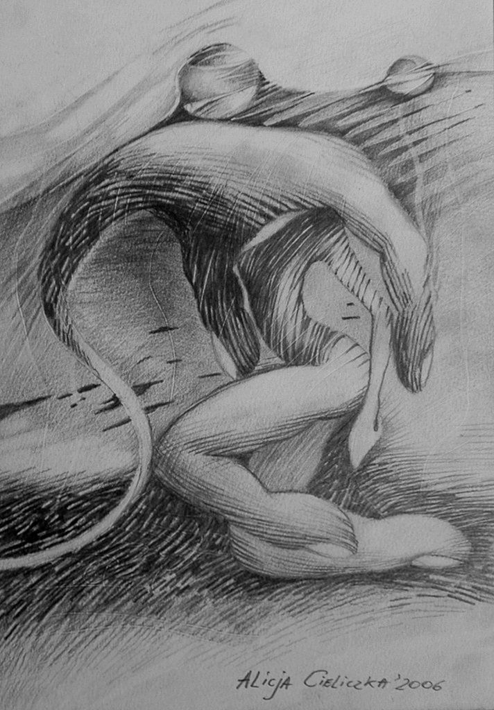 """https://flic.kr/p/o83KFN   MANIPULATION, drawing   Art exhibition (painting and drawing); """" Erotisch"""" /2011/, Rome, Italy"""