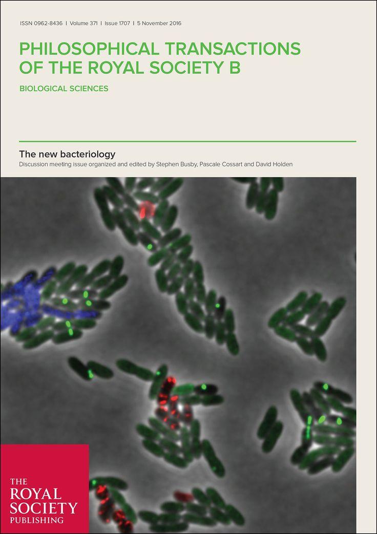RNA polymerase supply and flux through the lac operon in Escherichia coli  #biochemistry #biology #Galoperon #geneexpression #Health_Medical_Pharma #Lacoperon #MolecularBiology #Operator #Operon #Promoter #RNApolymerase #transcription Check more at https://scifeeds.com/social-media-item/rna-polymerase-supply-and-flux-through-the-lac-operon-in-escherichia-coli/