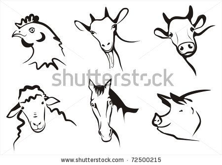 farm animals collection of symbols in simple black lines by baldyrgan, via Shutterstock