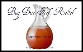 The Prudent Pantry: Bug Bite Itch Relief with Apple Cider Vinegar