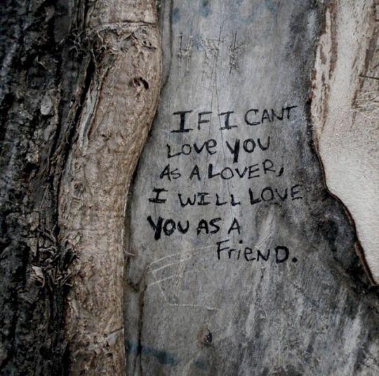 Если я не могу любить тебя как возлюбленный, я буду любить тебя как друг