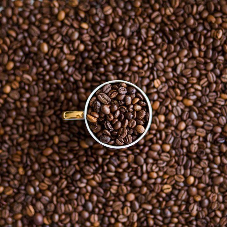 Кофейных сновидений #кофе #кофеминск  #зерна #вечернийкофе #кофейня #кофейни #минск #ароматныйкофе #кофеман #люблюкофе #вкусныйкофе #кафе #кафеминск #лучшийкофе #кофессобой #беларусь #coffee #bestcoffee #bestcoffeeminsk #instacoffee #instagramanet #coffeetime #coffeelover #coffeebreak #coffeelovers #coffeelove #coffeegram #coffeeholic